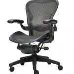 The Aeron chair we don't own.